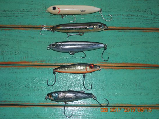 lip less bluefish lures